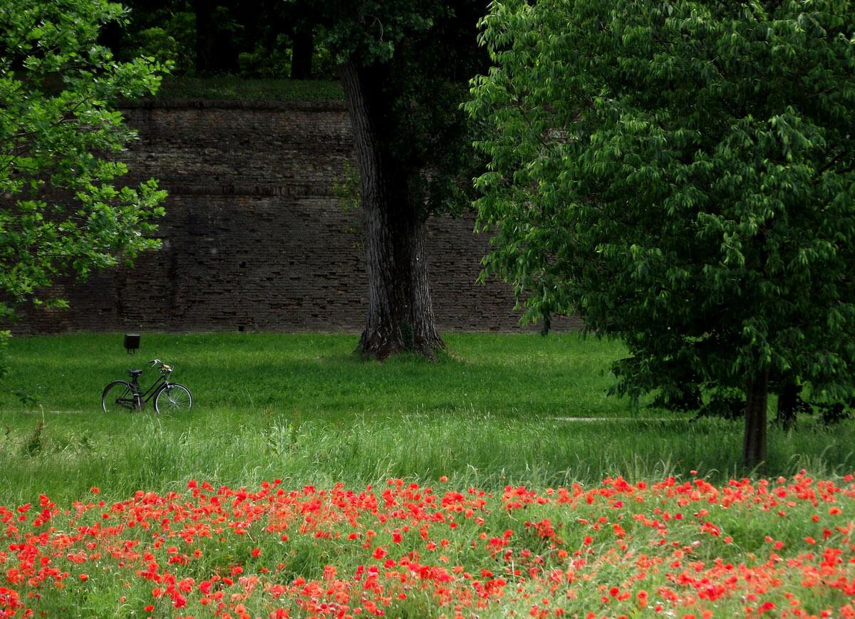 Le mura di Ferrara