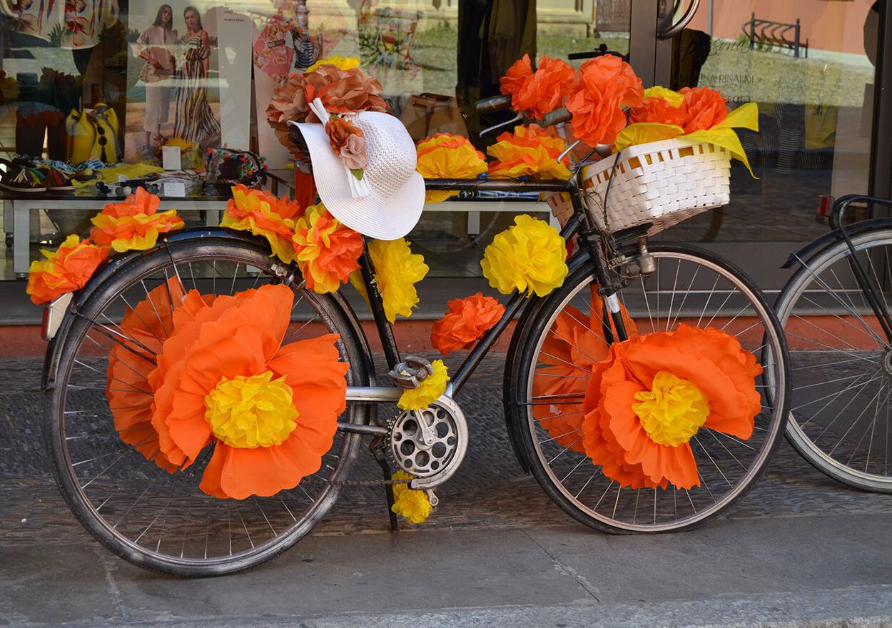 naturalmente-arte-guida-turistica-ferrara-biciclando